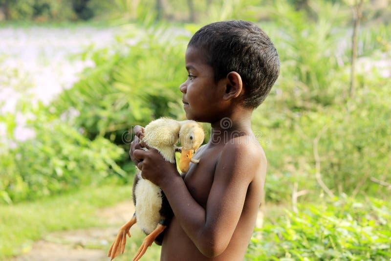 拥抱鸭子的父亲般的感觉 库存照片