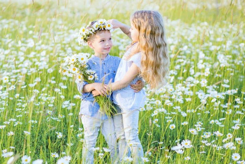 拥抱chamomi的领域的美丽的小女孩一个小男孩 免版税库存照片