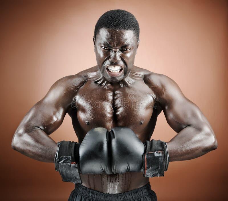 拳击手情感强烈肌肉 库存照片