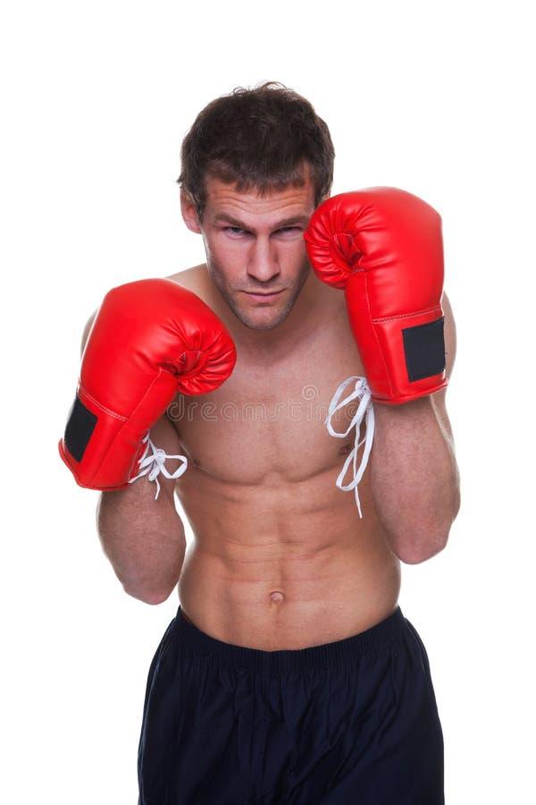 拳击手查出的男 免版税库存照片