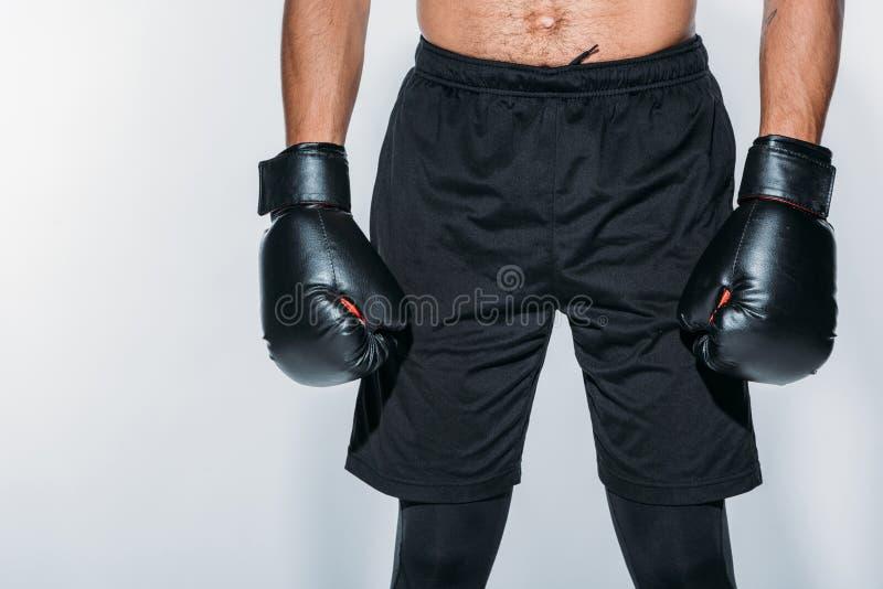 拳击手的播种的图象体育短裤和手套的 库存照片