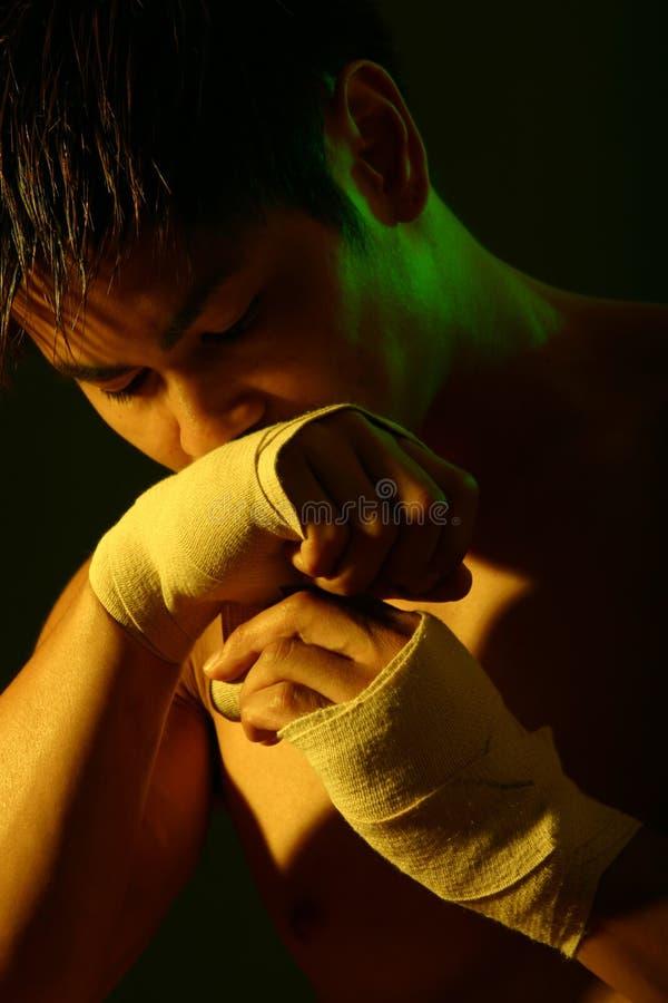 拳击手系列 免版税库存图片