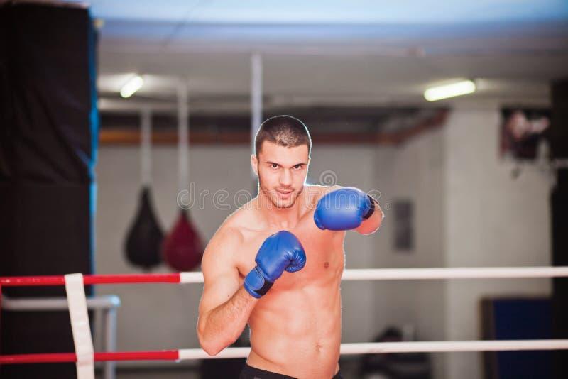 拳击手纵向 免版税图库摄影