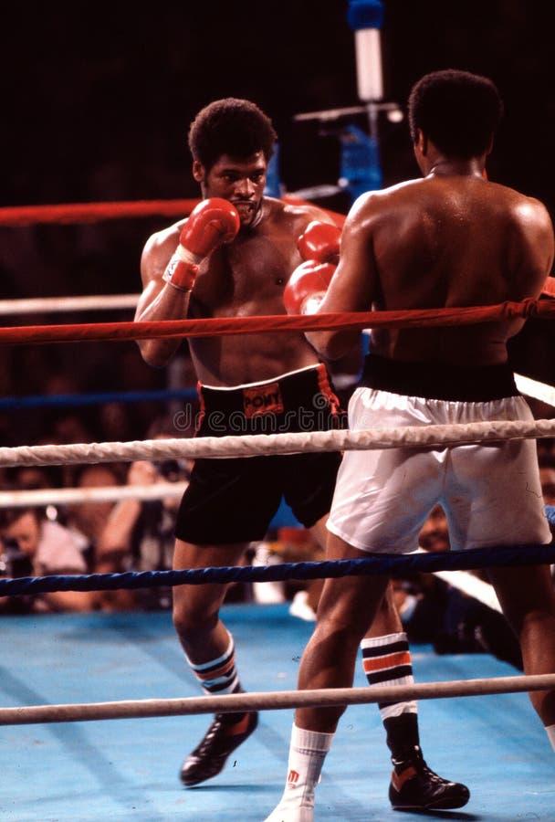 拳击手重量级的利昂斯平克斯 免版税库存照片