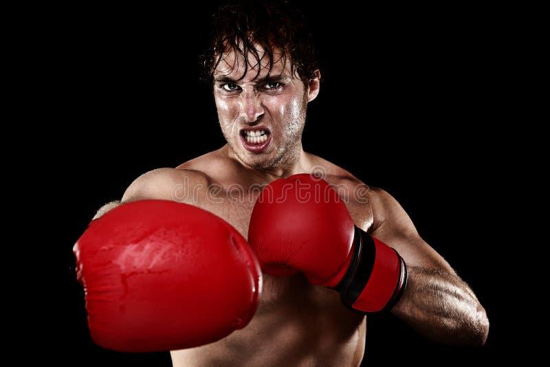 拳击拳击手 库存照片