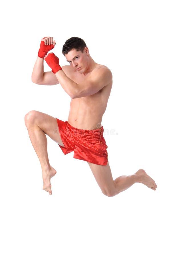拳击时间 免版税库存照片
