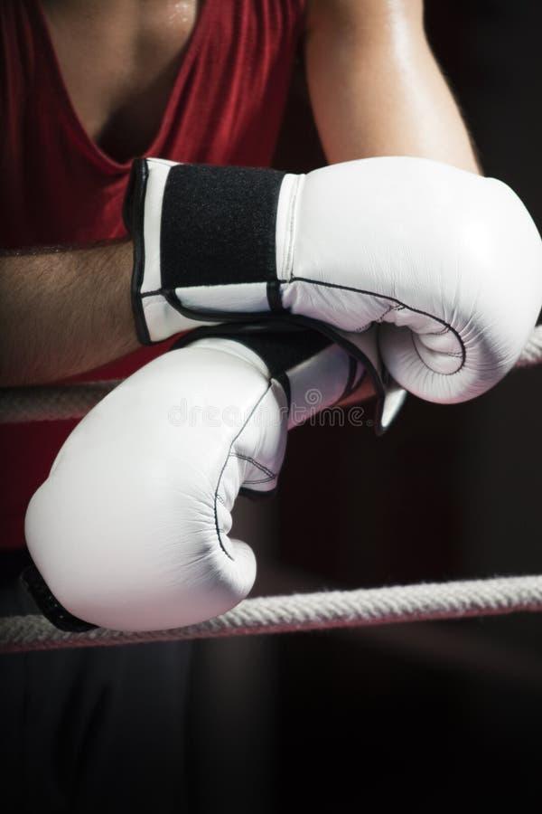 拳击 库存照片