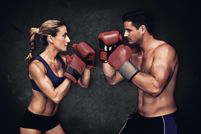 拳击夫妇的综合图象 免版税库存图片