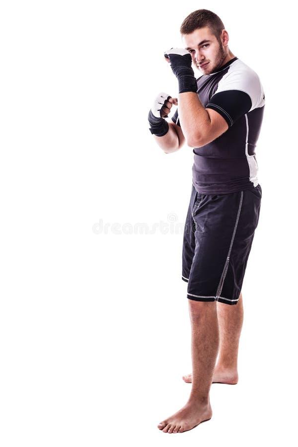 拳击姿态 库存图片
