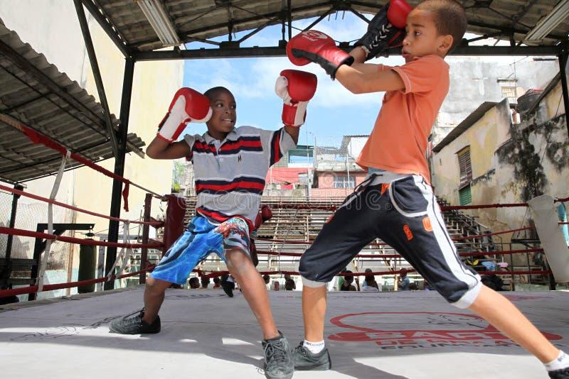 拳击孩子在哈瓦那,古巴 免版税图库摄影