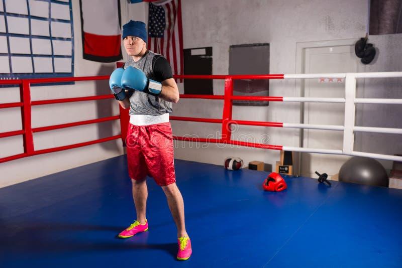 拳击手套的年轻运动的男性拳击手为争斗做准备 免版税库存图片