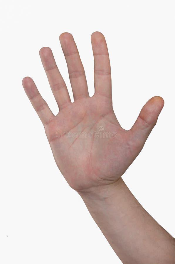 拳击拳头现有量人战争 五个手指,展开的棕榈 免版税库存图片