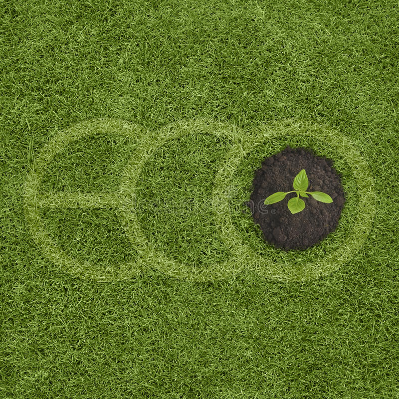 拼写在草和小新芽生长的大绿色信件ECO 免版税库存图片