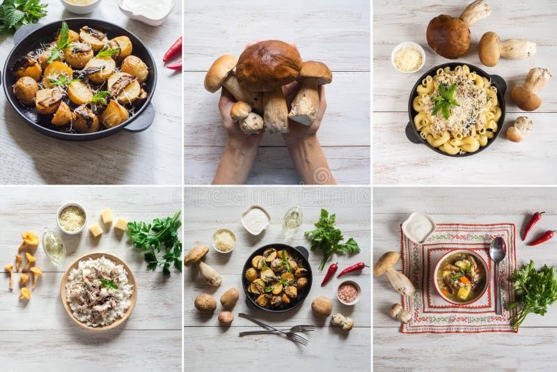 拼贴画显示盘用蘑菇 免版税库存照片