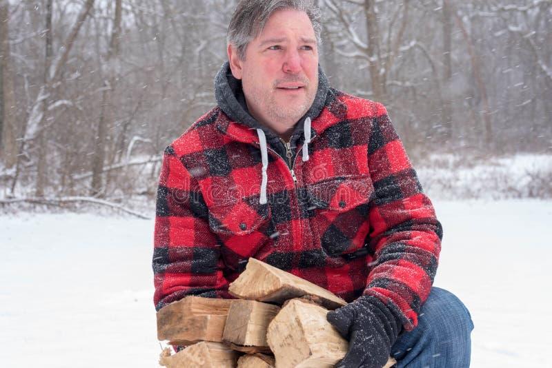 拾起木柴的人带来里面 库存照片