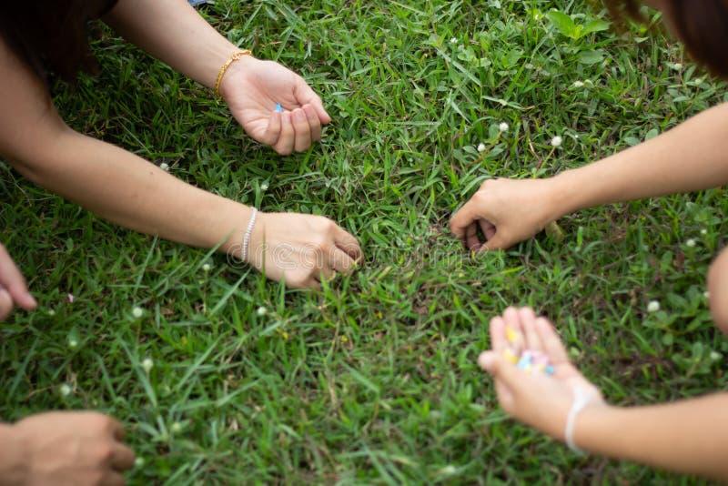 拾起纸的妇女的手在庭院,手藏品里 库存照片
