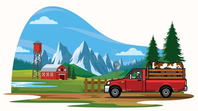 拾起运输在农场的卡车母牛 向量例证