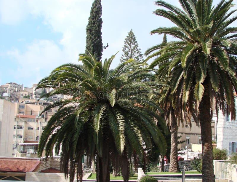 拿撒勒市 以色列 城市和它南部的自然的全景 免版税图库摄影