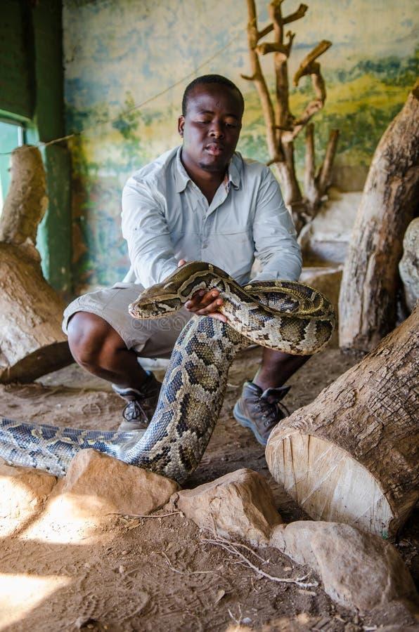 拿着一个大Python用他的手的人显示它对游人 PheZulu文化村庄,南非 免版税库存照片