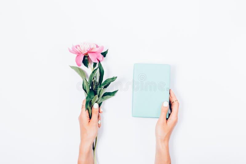 拿着一个桃红色牡丹花和蓝色礼物盒的妇女 免版税库存照片