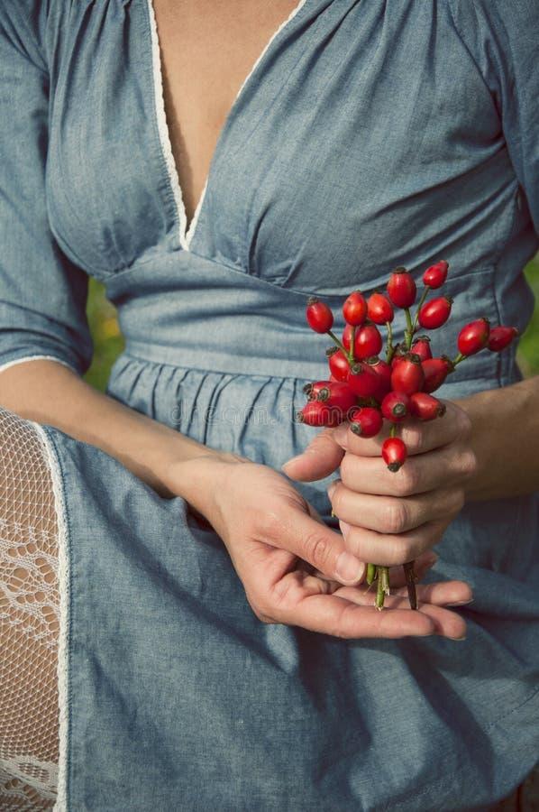 拿着一个桶野玫瑰果的妇女 免版税库存图片