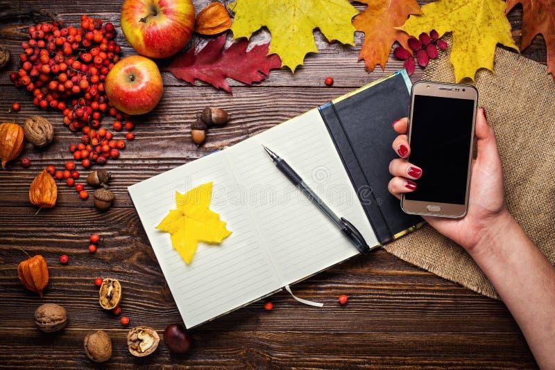 拿着一个电话、笔记本、笔和电话在秋天stil的女孩 库存照片