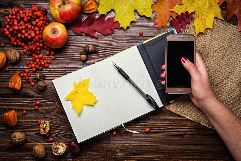 拿着一个电话、笔记本、笔和电话在秋天stil的女孩 免版税库存图片