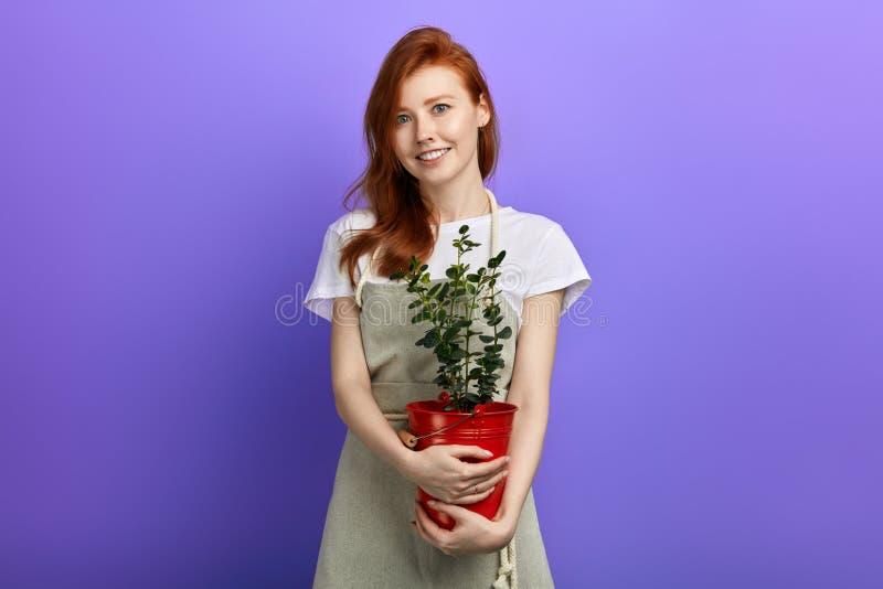 拿着一个罐花的美丽的年轻微笑的红发妇女 免版税库存图片