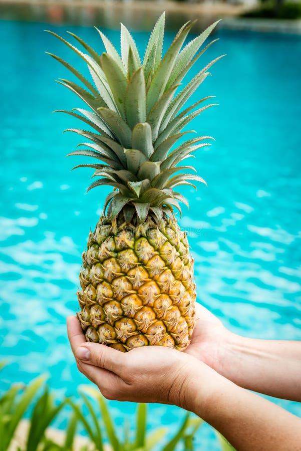 拿着一个黄色菠萝的手 免版税库存照片
