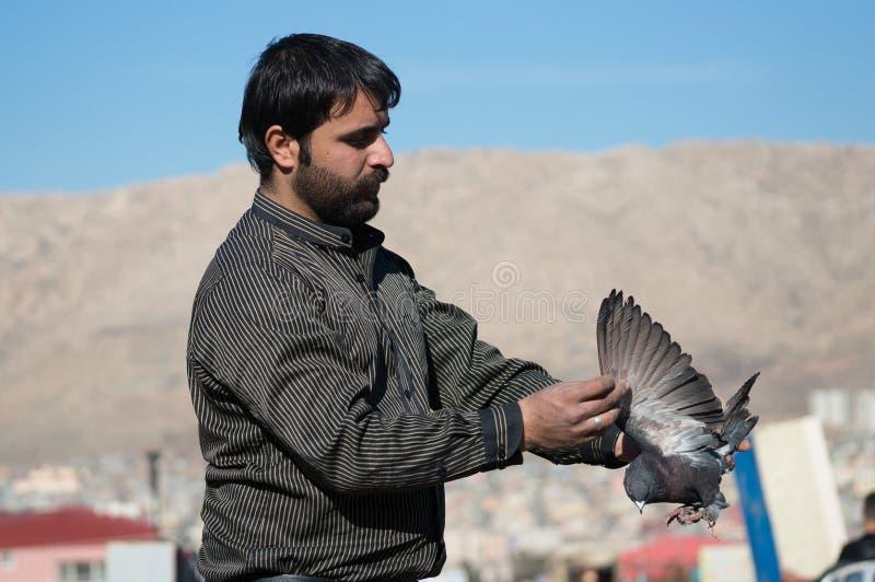 拿着一只黑鸽子的鸽子收藏家 免版税库存照片