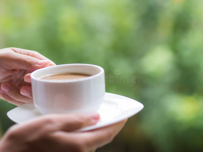 拿着一杯咖啡的妇女手在庭院早晨 免版税库存图片