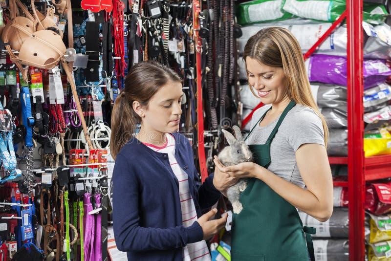 拿着与女孩的女推销员兔子在宠物商店 图库摄影