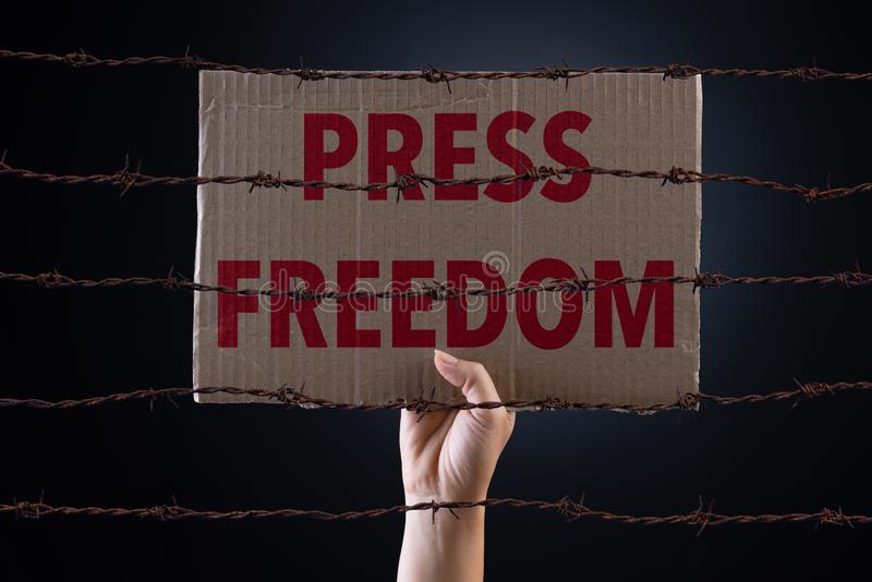 拿着与新闻自由文本和生锈的锋利的光秃的导线的妇女纸板纸在黑暗的背景,概念性图象 免版税库存图片