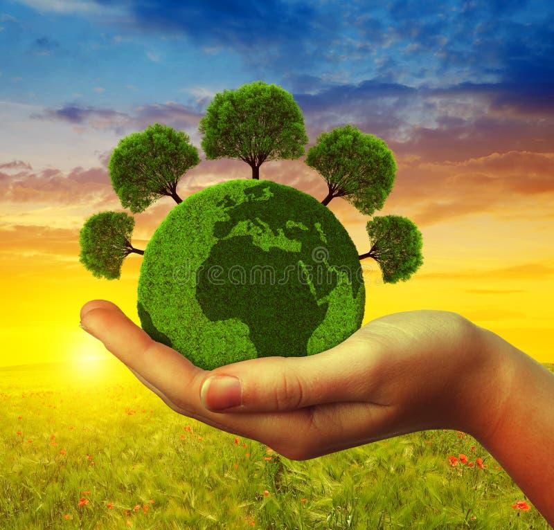 拿着与树的手绿色行星 库存照片