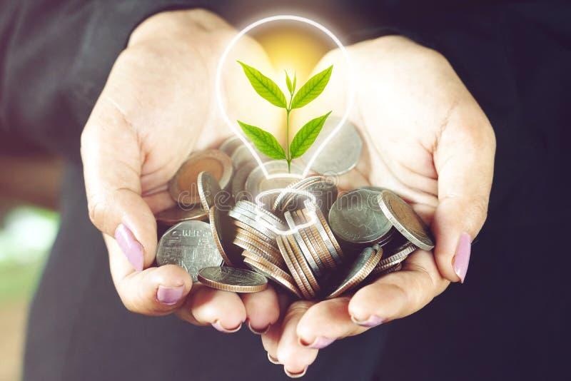 拿着与电灯泡的硬币和树生长,成长事务的概念的女商人手 免版税库存图片