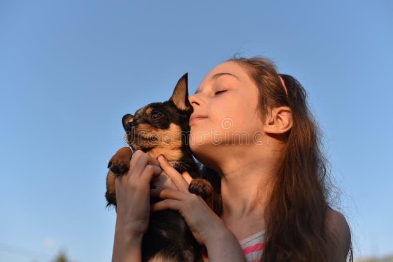 拿着充满爱她在海室外背景的美丽的年轻白种人女孩小的奇瓦瓦狗爱犬 免版税库存照片