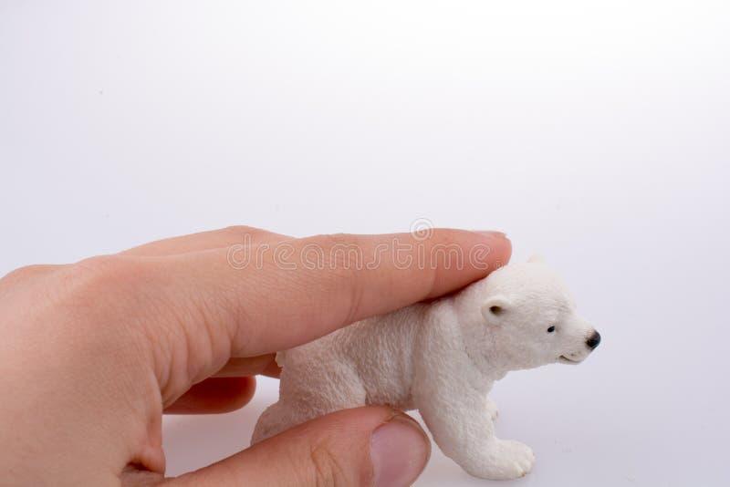 拿着北极熊的手 免版税库存照片