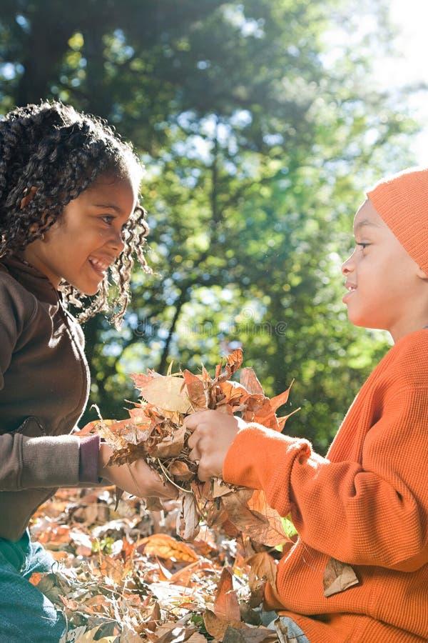 Download 拿着叶子的孩子 库存照片. 图片 包括有 少许, 其中每一, 比赛, 庭院, 童年, 敬慕, 无罪, 大使 - 62533972