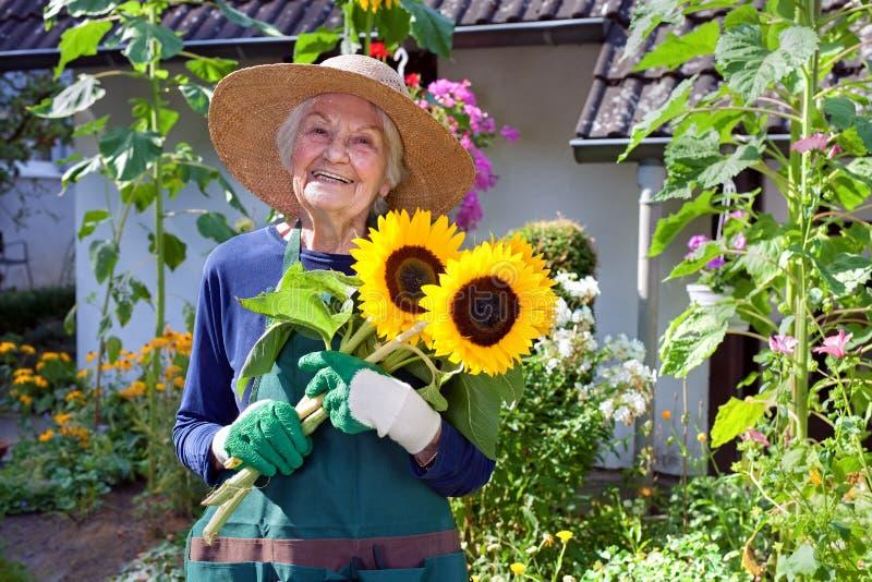 拿着向日葵的花束愉快的资深妇女 图库摄影