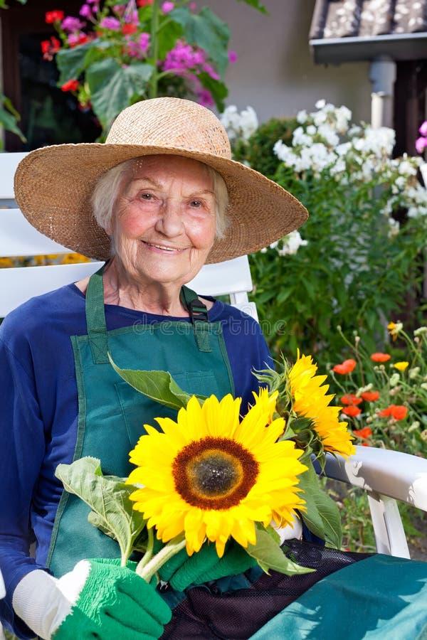 拿着向日葵的从事园艺的成套装备的老妇人 库存照片