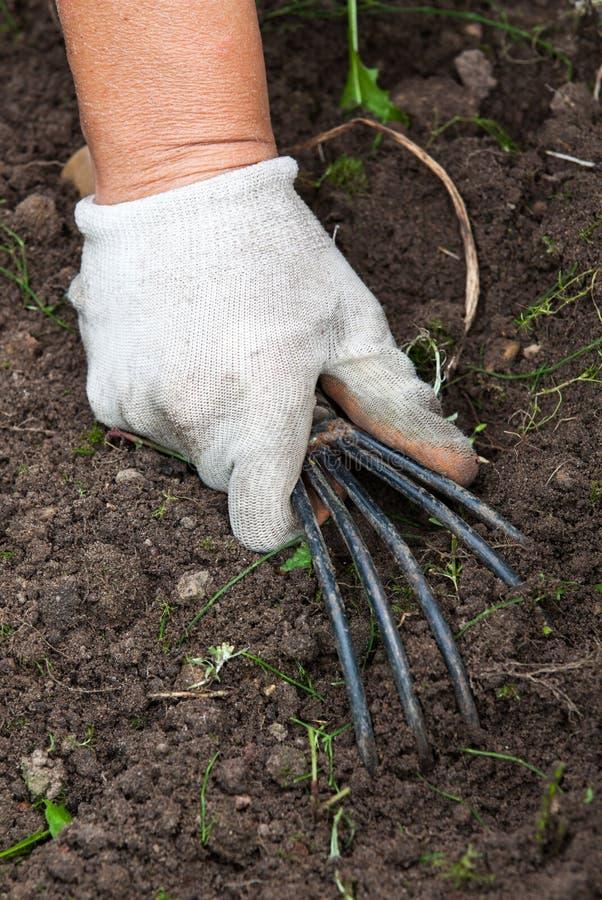拿着园艺工具的手 库存图片