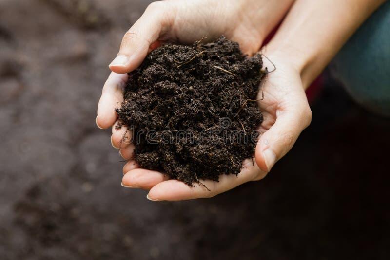拿着土壤的女性花匠的播种的手 图库摄影