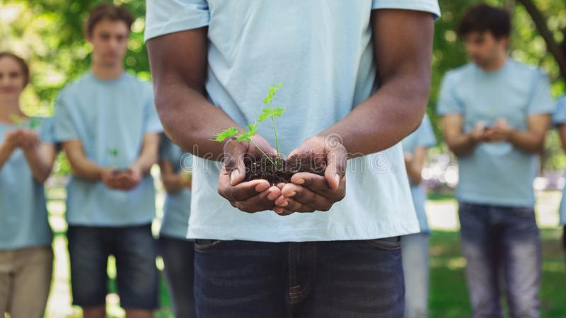 拿着土壤的非裔美国人的人手植物 免版税库存图片