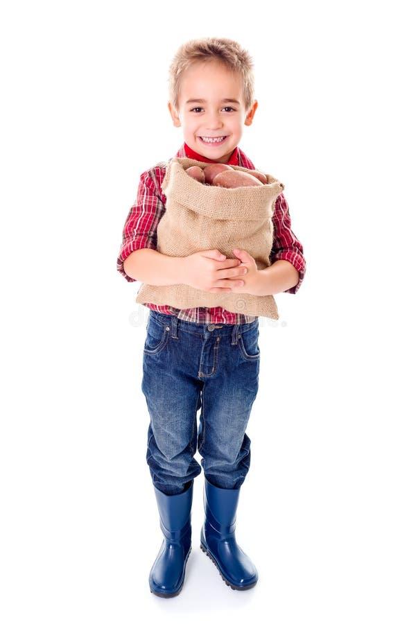 拿着土豆收获的愉快的矮小的农业学家 免版税库存图片