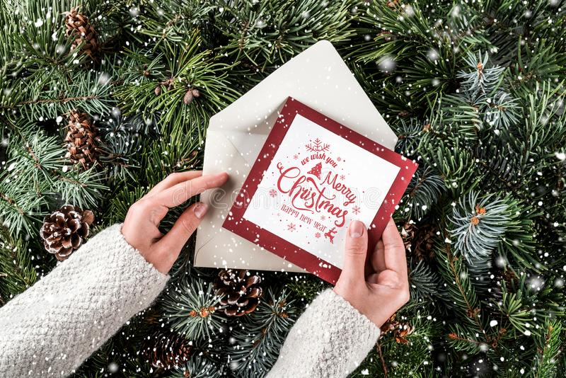拿着在圣诞节冷杉分支背景,云杉,杜松,冷杉,落叶松属的女性手一圣诞卡片 免版税图库摄影