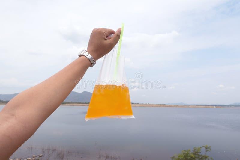 拿着在塑料袋的妇女手一杯桔子汽水 免版税库存照片