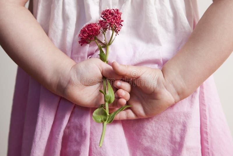 拿着在她后的女孩桃红色花  免版税库存图片