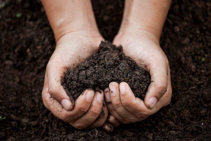拿着在心脏形状的妇女手土壤 免版税库存图片