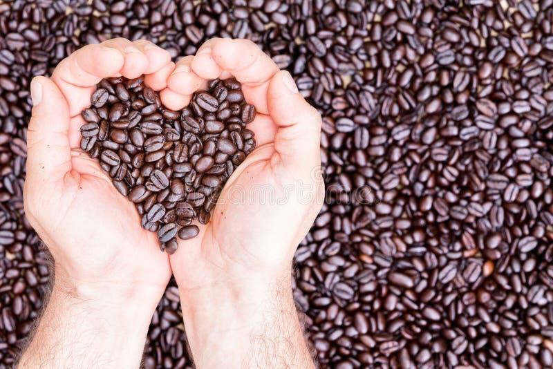 拿着在心脏形状的手咖啡豆  免版税图库摄影