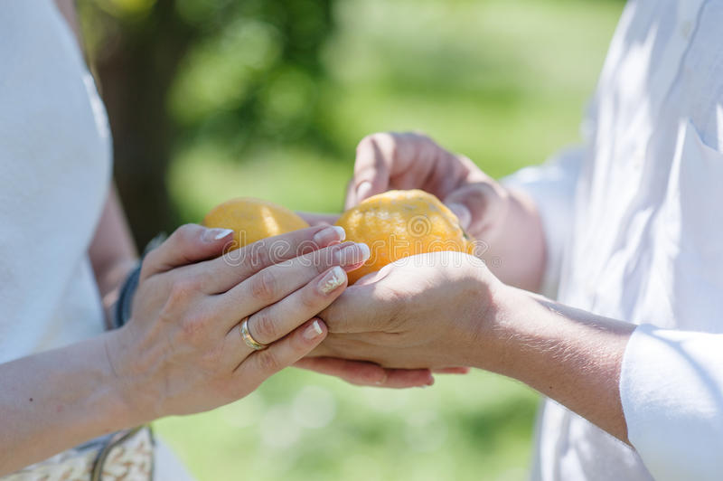 拿着在手上两个柠檬的新娘和新郎 库存照片